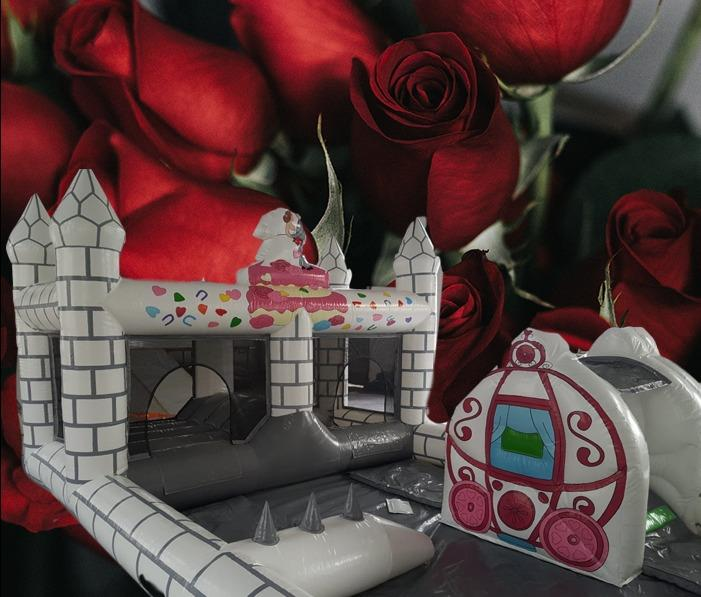 Wedding Playzone 1524